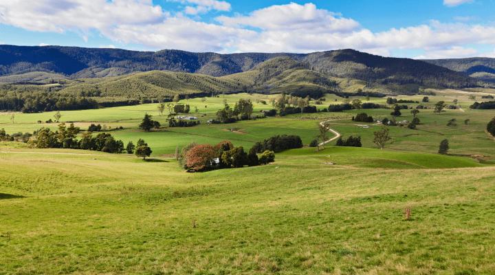 A review into NSW  Digital survey plans – the Grosvenor Review