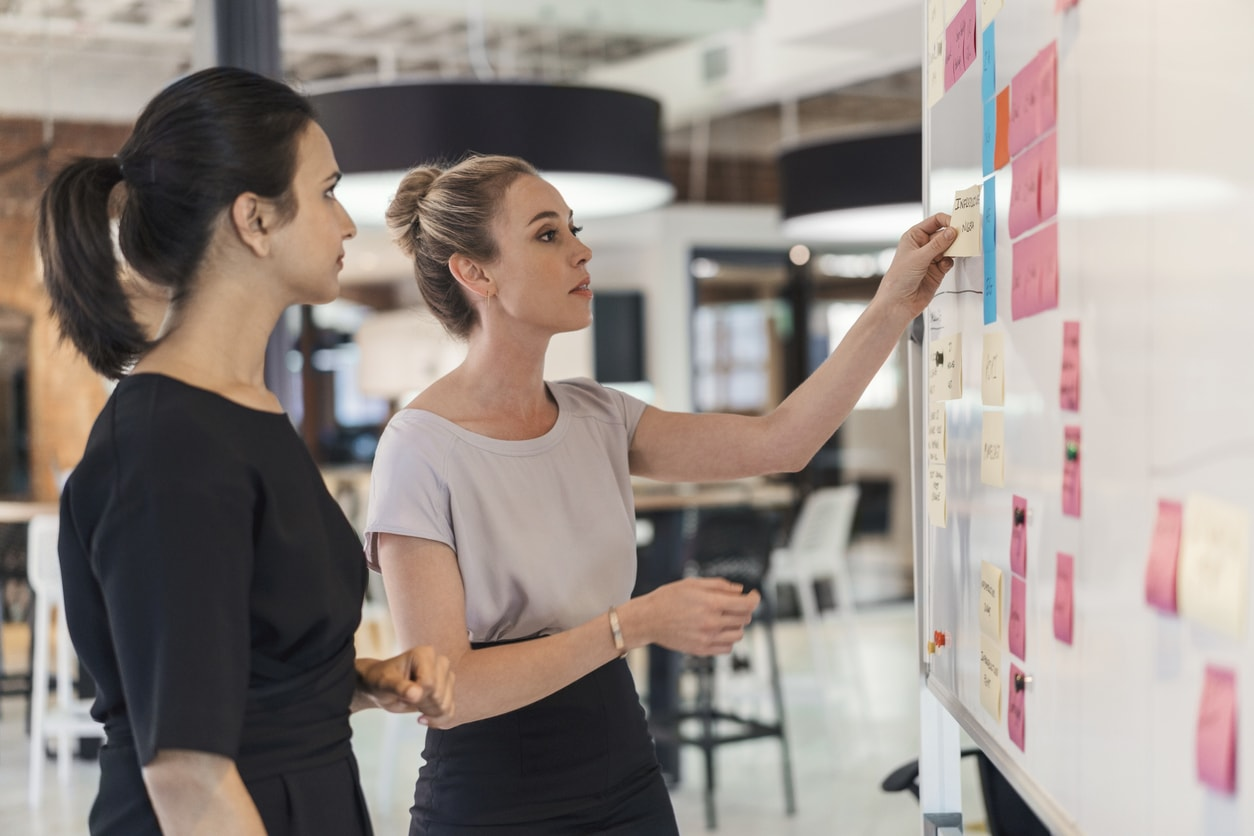 Planning in the new program management environment